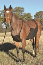 Cashel Crusader Fly Sheet Belly Guard